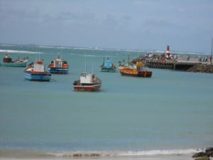 The boats at Struisbaai Harbour