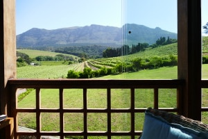 Beautiful views in Constantia
