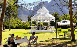 The beautiful picnic setting at Boschendal