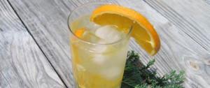 Inverouche Verdant Gin from Stillbaai