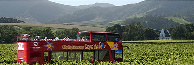 Wine-Tour-to-Constantia-Valley
