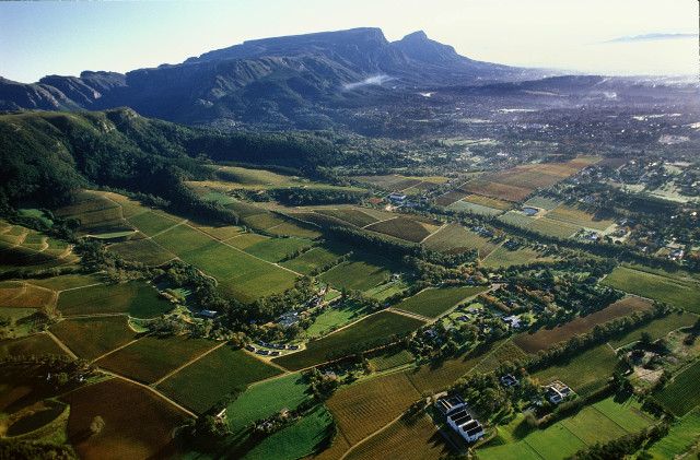 constantia-Valley
