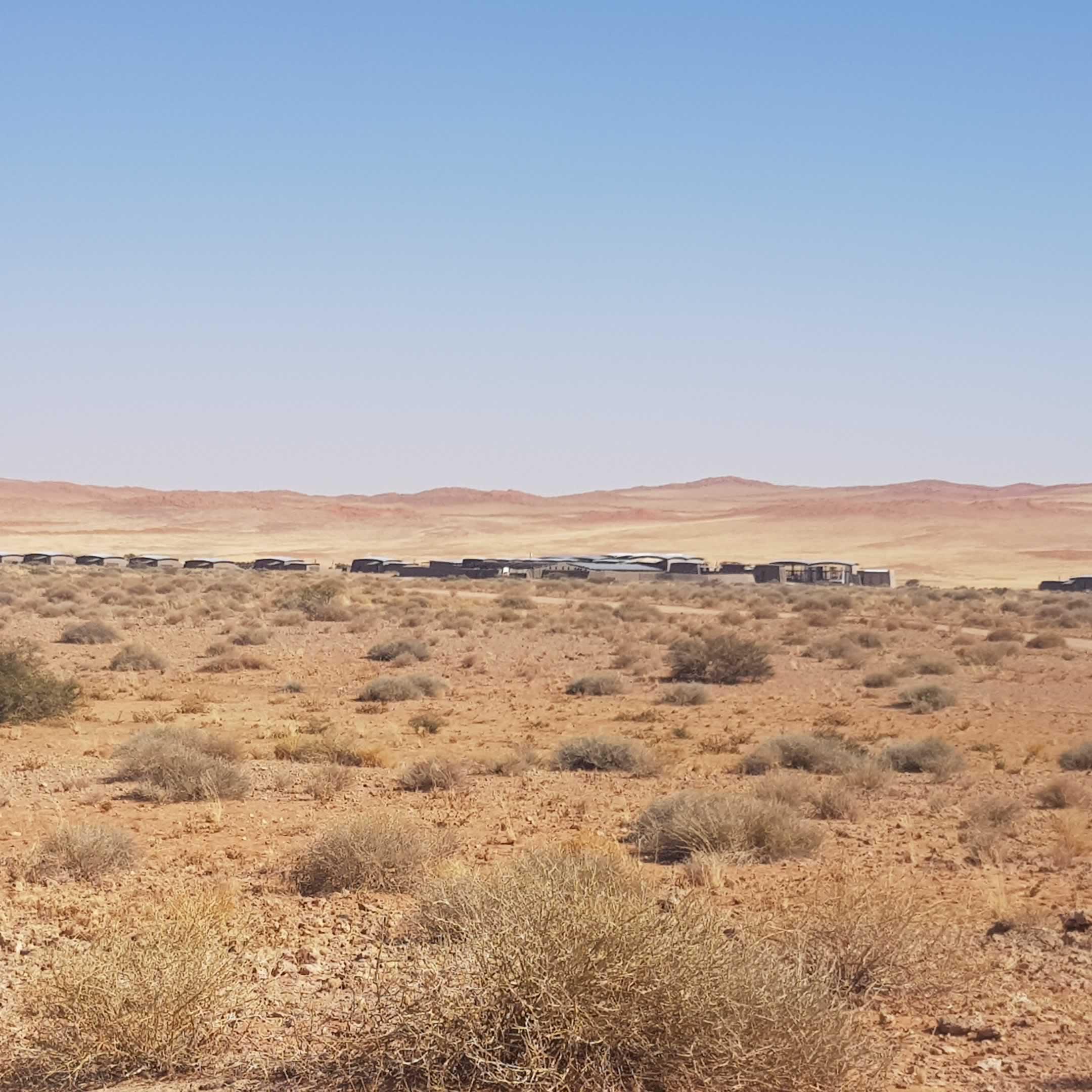 DesertGrace